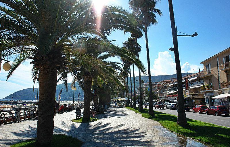 Een straat met palmbomen in Andora