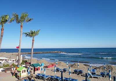 Palmiers et des chaises de plage dans une plage de Arma di Taggia
