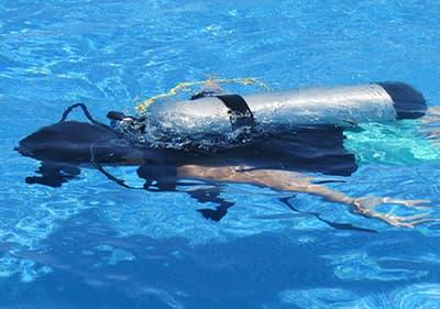 Plongée sous marine en Ligurie- explorez les fonds marins en plongée en tuba, participez à une sortie de plongée ou découvrez une école de plongée