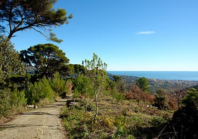 View of amazing ligurian Nature of hikers perspective