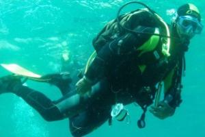 Diving centre Lisca di pesce Centres de plongée à Ligurie