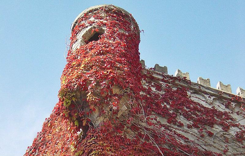 Murs du château à côté d'une église à Bergeggi