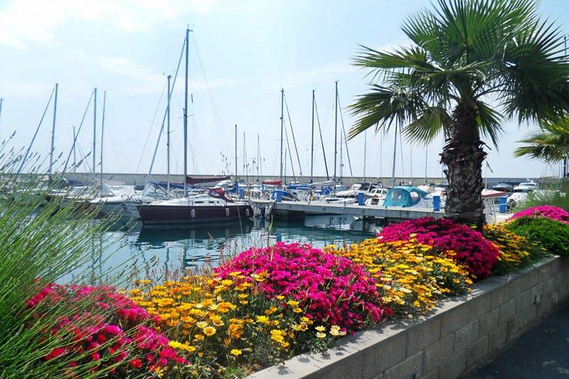 Fleurs colorées à côté d'un port de San Lorenzo al Mare