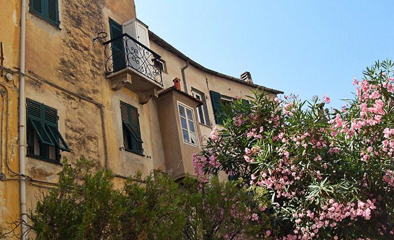 Fleurs à côté d'une maison à Pontedassio