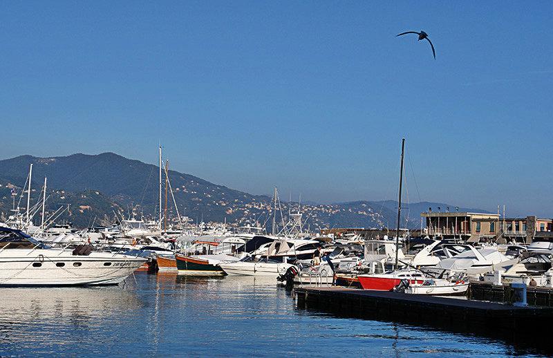 Un port à Santa Margherita Ligure