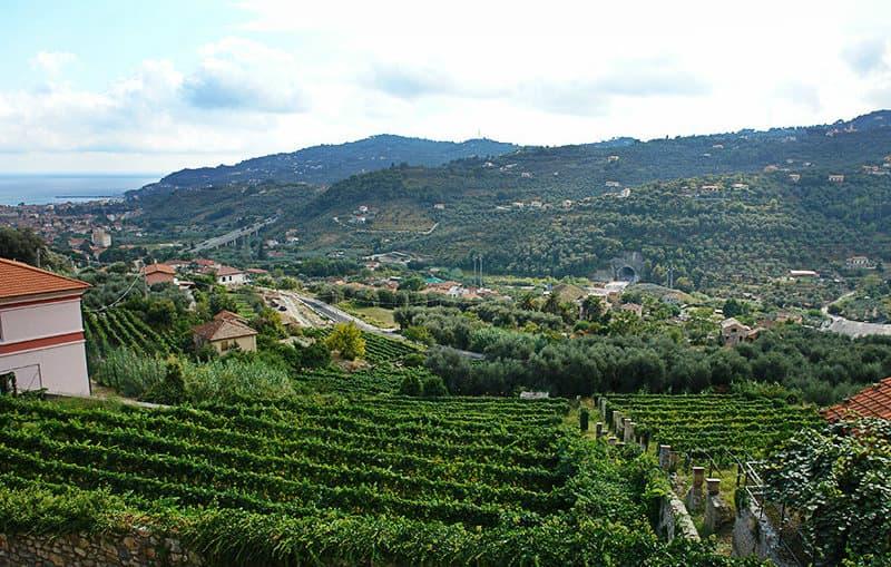 Une vue magnifique de la ville de Diano Castello