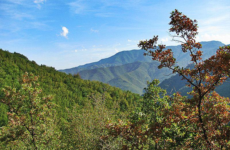 Une vue d'une montagne dans un village de Molini di Triora